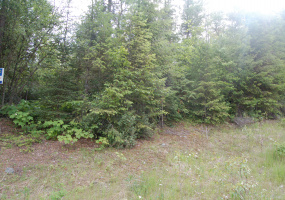 Lot 2 Schulli Road,Christina Lake,British Columbia,Canada V0H 1E0,Vacant Land,Schulli Road,1116