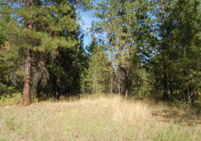 Lot 3 Eagle Ridge, Grand Forks, British Columbia, Canada V0H 1H2, ,Vacant Land,For sale,Eagle Ridge,1192